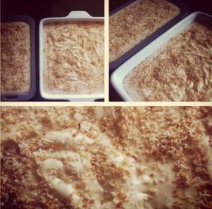 toasted coconut and caramel icecream
