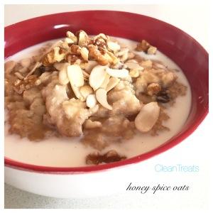 Honey spice oats 2